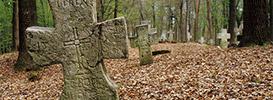 Kamieniarka bruśnieńska<br>(zabytkowe cmentarze)