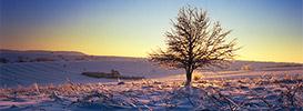Widoki zimowe