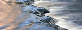 Rzeki, potoki, szumy