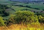 Wiosna roztoczańska - okolice Kol. Gorajec-Zagroble