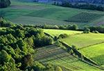 Roztocze Zachodnie - okolice Kol. Gorajec-Zagroble