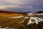Przedwiośnie na polach Kosobud