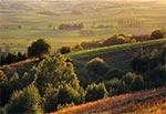 W oddali dolina rzeki Gorajec - widok z Roztocza Szczebrzeszyńskiego za Szperówką. Obecnie ten widok nie istnieje, bo na pierwszym planie wyrósł las i wszystko zasłonił