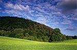 Czubata Góra koło Kawęczynka na Roztoczu Zachodnim