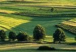 Wiosenny krajobraz Roztocza Zachodniego - Kol. Gorajec-Zagroble