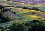 Okolice przysiółka Kol. Gorajec-Zagroble