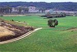 Dolina Wolicy na Działach Grabowieckich