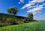Wiosna na polach pachnie opryskami - rezerwat Kąty