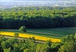 Wiosenne Roztocze Zachodnie widziane z lotu ptaka - Szperówka