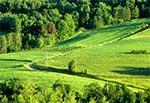 Okolice wsi Gorajec-Zagroble