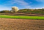 Lessowe pola tarasowe (terasowe) na Roztoczu Zachodnim - okolice Kawęczyna