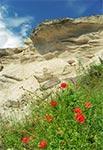 Ściana kamieniołomu w Hucie Różanieckiej