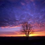 Na Roztoczu o zachodzie słońca