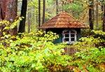 """Kapliczka na miejscu przedwojennej gajówki """"Kalwaria"""""""