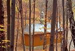 Kaplica leśna nad źródłem Słotwiny w Niwkach Horynieckich, sanktuarium Matki Bożej