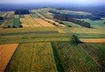 Roztocze Środkowe widziane z lotu ptaka - widok na Górę Młynarkę