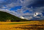 Góra Łysiec - na Roztoczu Zachodnim