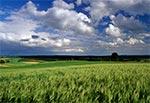 Lato na Działach Grabowieckich