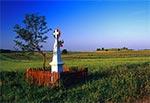 Okolice wsi Górniki
