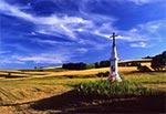 Okolice wsi Kolonia Kondraty