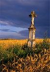 Krzyż z roku 189... ? w Polance Horynieckiej