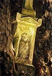 Figura św. Mikołaja na krzyżu z roku 1906,  w nieistniejącej wsi Zawałyla koło Werchraty