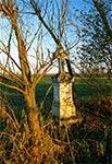 Krzyż bruśnieński w rejonie Wierzbicy