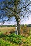 Bruśnieński krzyż przydrożny pod Radrużem, niedaleko granicy