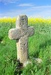 Stary przydrożny krzyż bruśnieński w okolicy wsi Żurawce