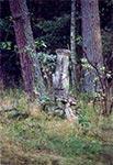 Krzyż przydrożny w nieistniejącym przysiółki Lublińca - Tepiły