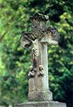 Krzyż bruśnieński na zabytkowym cmentarzu w Oleszycach