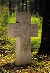 Krzyż lotnika z I Wojny Światowej - koło Nowin Horynieckich