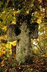 Krzyż bruśnieński na cerkiewnym cmentarzu w Podemszczyźnie