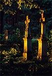 Krzyż bruśnieński na zabytkowym cmentarzu w Lówczy