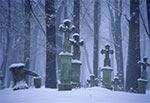 Cmentarz w przedwojennej wsi Tymosze