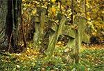 Cmentarz w Podemszczyźnie (przed renowacją)