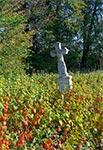 Korczmin - Łany miechunki na cmentarzu z nagrobkami bruśnieńskimi
