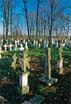 Cmentarz w Wierzbicy
