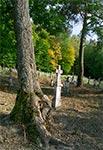 Na cmentarzu w Mycowie