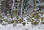 Cmentarz w Starym Bruśnie zimą