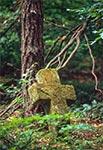 Stara Huta - cmentarz z nagrobkami bruśnienskimi