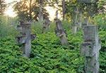 Cmentarz z nagrobkami bruśnieńskimi. Szkopuł w tym, że zdjecie jest bardzo stare i nie pamiętamy gdzie zostalo zrobione