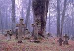 Cmentarz w Lubyczy-Kniazie - ten przy ruinie cerkwi murowanej