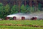 Retorty do wypalania węgla drzewnego na Roztoczu znajdują się tylko w jednym miejscu - przy drodze na Wielki Dział z Woli Wielkiej