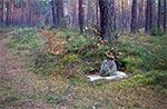 Tajemniczy ułomek (zapewne stary krzyż) przy nieistniejącym dworku Liptaya