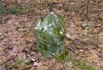 Starożytny słupek graniczny w roztoczańskim lesie - starożytny bo jak widać ma na górze małą piramidkę ;)