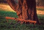 Grabki do wyznaczania grządek pod ponad stuletnią trześnią - Roztocze Środkowe