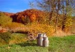 Na Roztoczu Zachodnim zachowało się najwięcej z klimatu dawnych wsi - jak widać tradycyjne, przydrożne bańki z mlekiem stoją tam w roku 2017