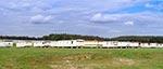 Największy camping na Roztoczu - między Werchratą a wsią Prusie