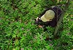 Plener fotograficzny w rezerwacie Jarugi, w RPN